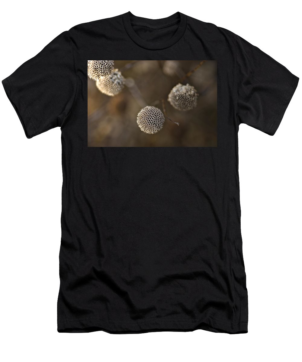 Decay Men's T-Shirt (Athletic Fit) featuring the photograph Circles by Samantha Eisenhauer