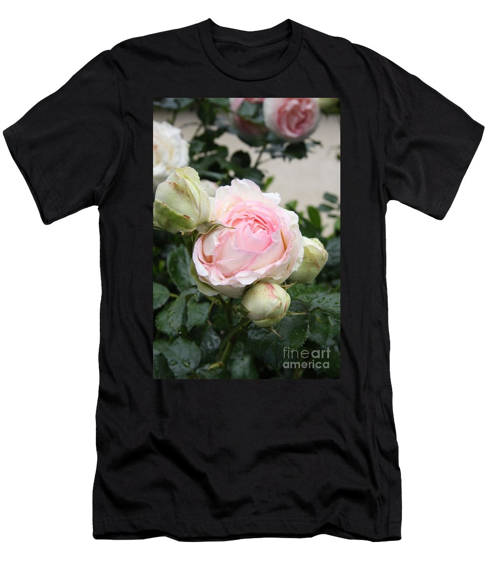 Roses Men's T-Shirt (Athletic Fit) featuring the photograph Classic Rose by Christiane Schulze Art And Photography