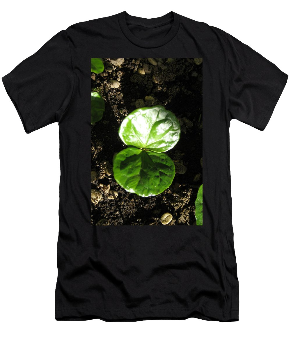 Coffee Men's T-Shirt (Athletic Fit) featuring the mixed media Coffee Plant The Shiny Thick Green Butterfly Look Plant Gives The Great Promise Of A Cash Crop To Th by Navin Joshi
