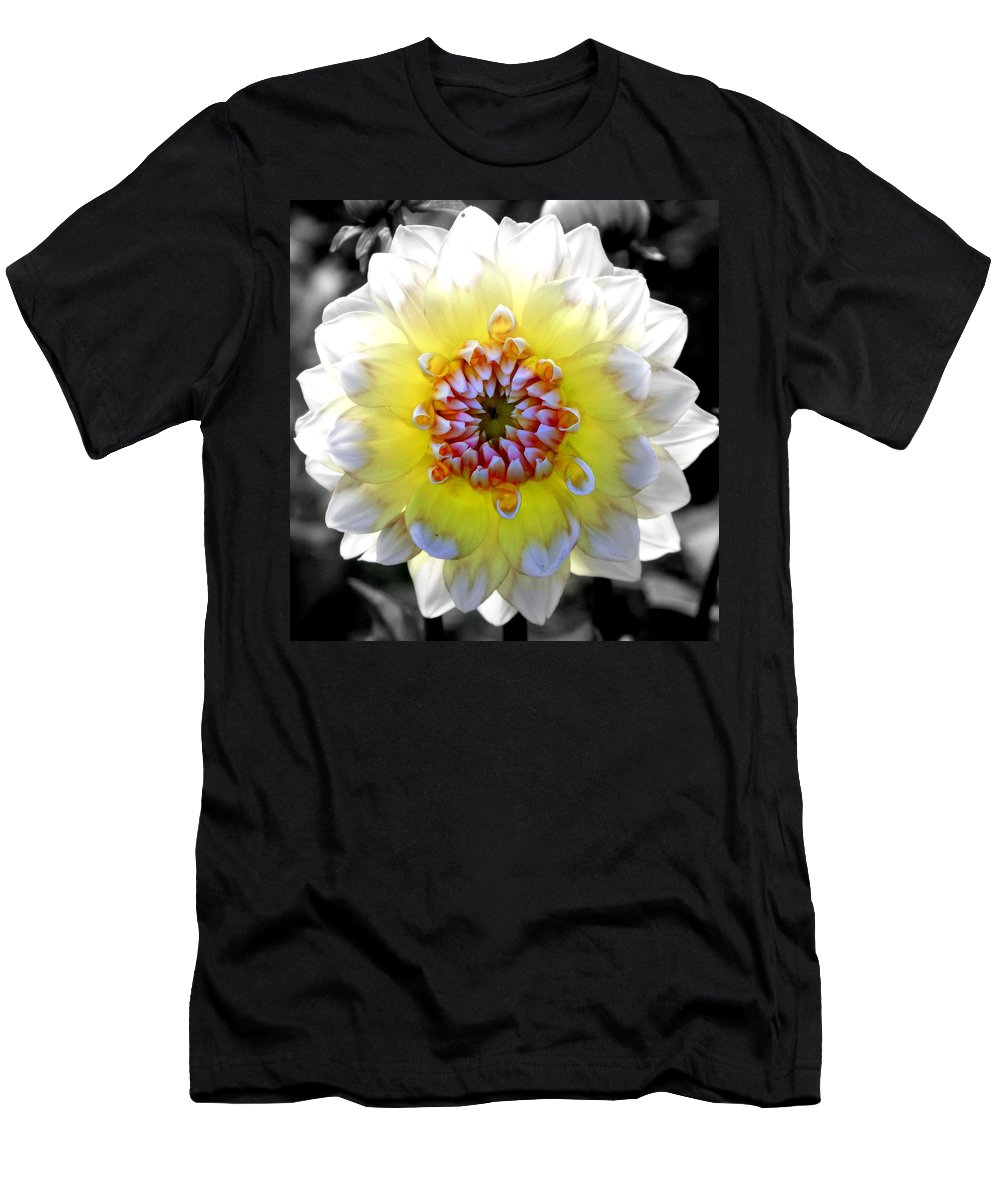 Flowers Men's T-Shirt (Athletic Fit) featuring the photograph Colorwheel by Karen Wiles