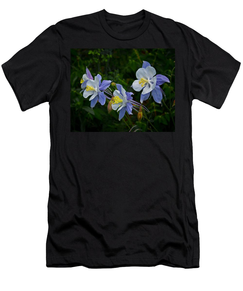 Artwork Men's T-Shirt (Athletic Fit) featuring the photograph Columbines by Ernie Echols