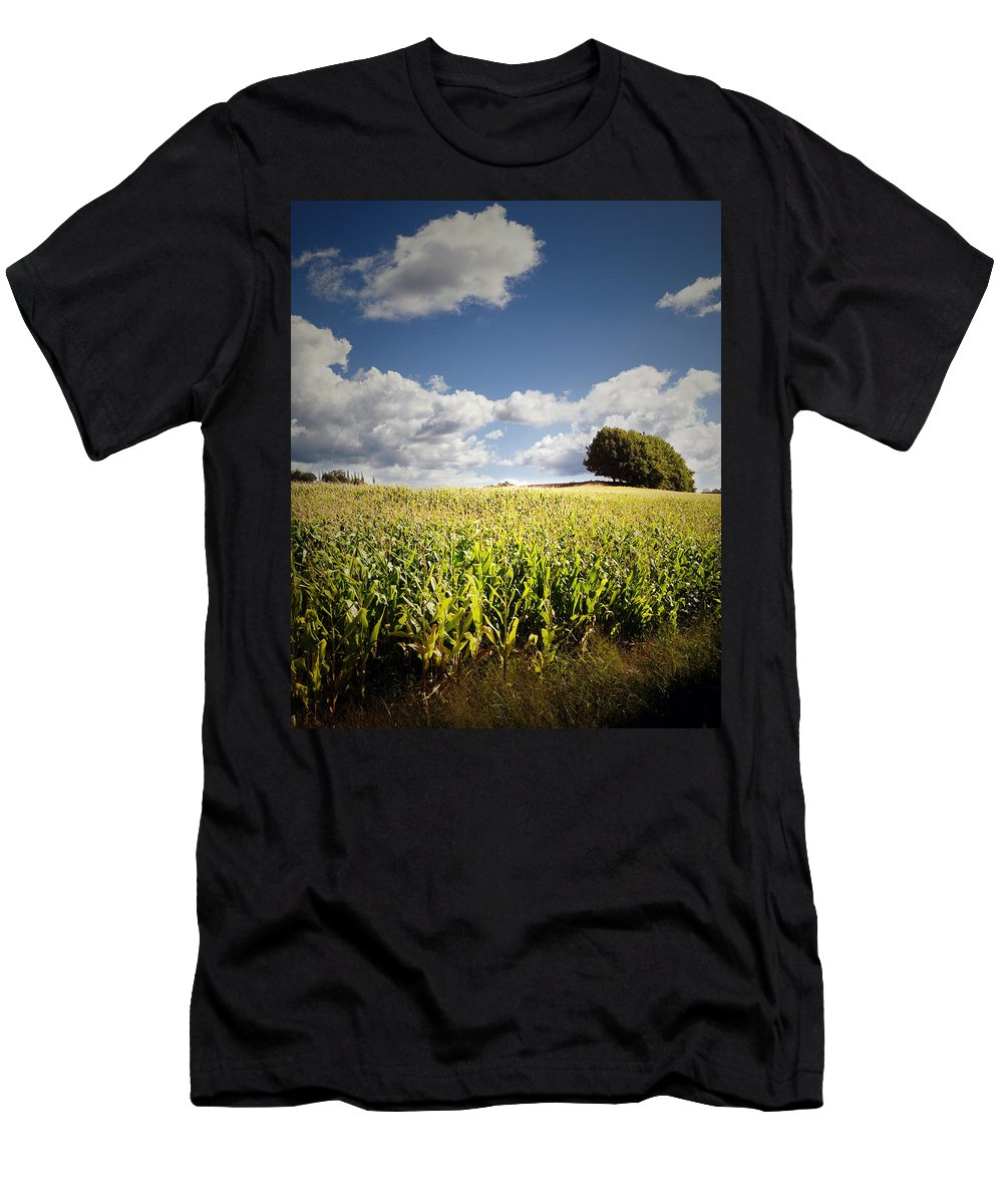 Farm Men's T-Shirt (Athletic Fit) featuring the photograph Corn Field by Les Cunliffe