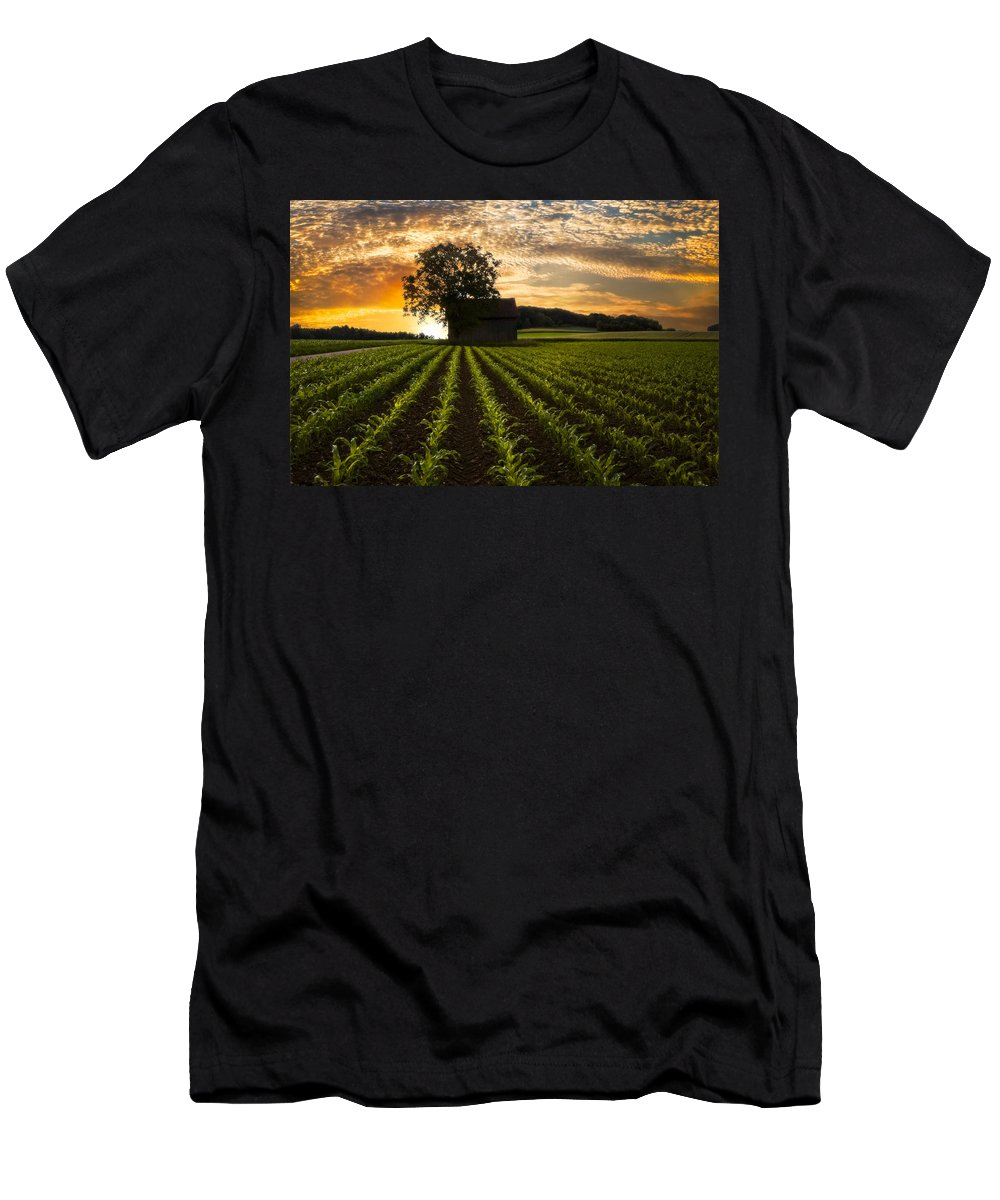 Appalachia T-Shirt featuring the photograph Corn Rows by Debra and Dave Vanderlaan