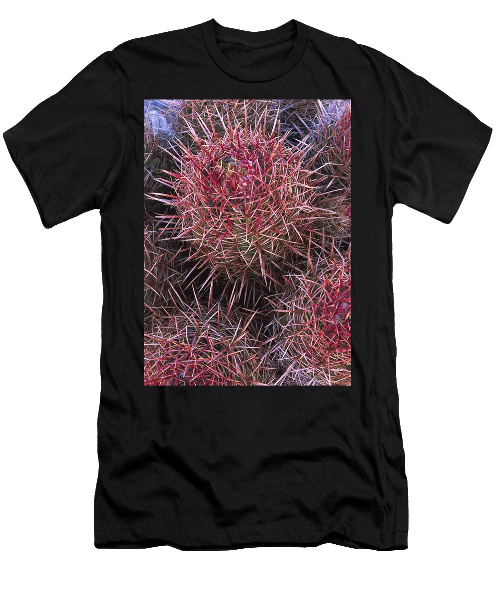 Feb0514 Men's T-Shirt (Athletic Fit) featuring the photograph Cotton-top Cactus Detail by Tim Fitzharris