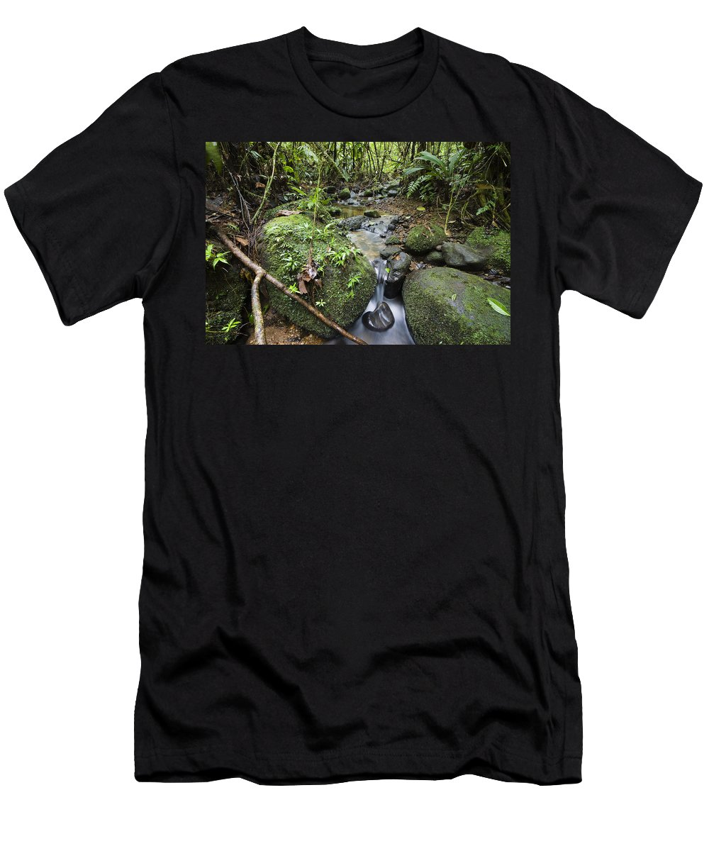 Feb0514 Men's T-Shirt (Athletic Fit) featuring the photograph Creek In Mountain Rainforest Costa Rica by Konrad Wothe