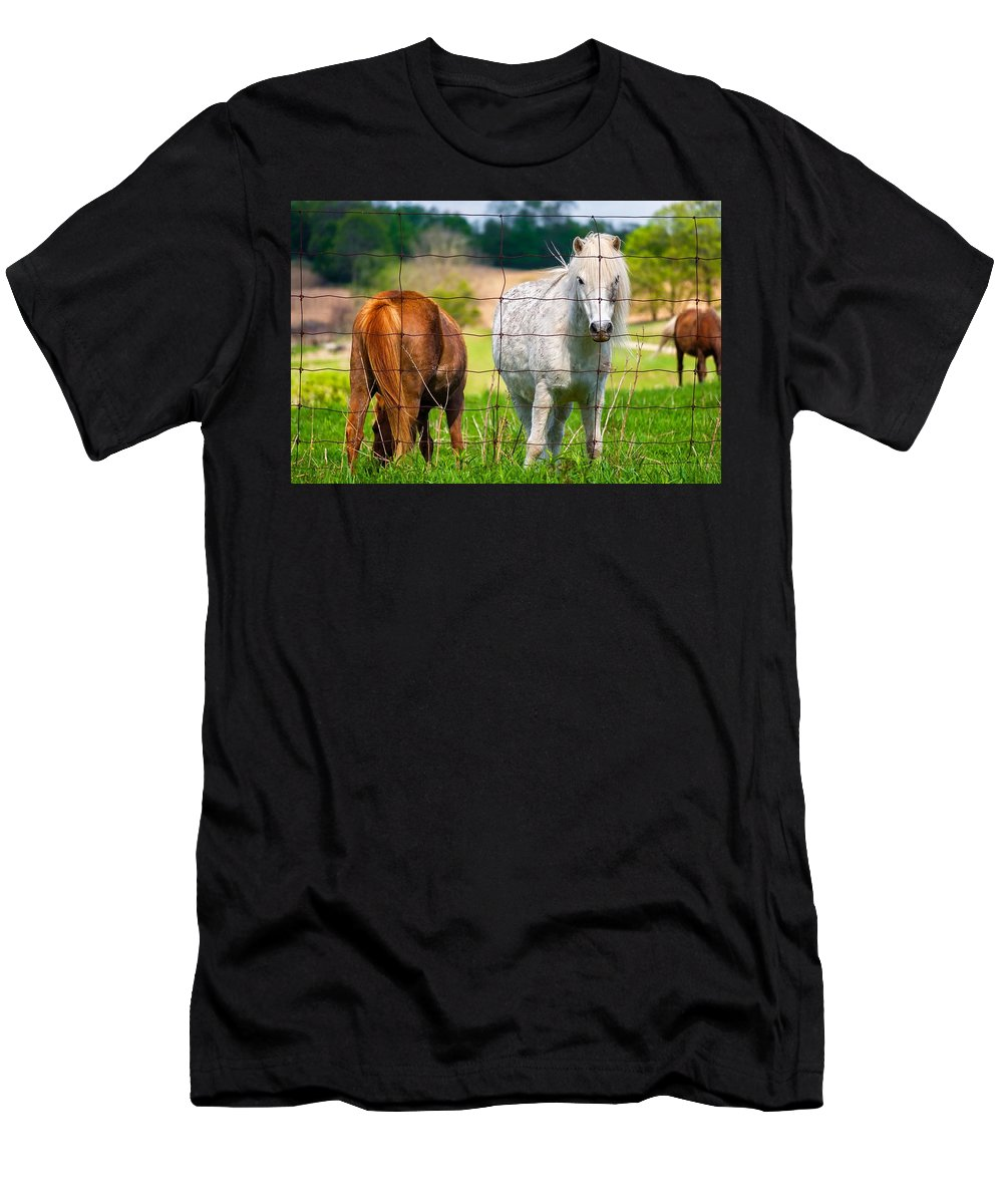 Pony Men's T-Shirt (Athletic Fit) featuring the photograph Curious Pony by Steve Harrington