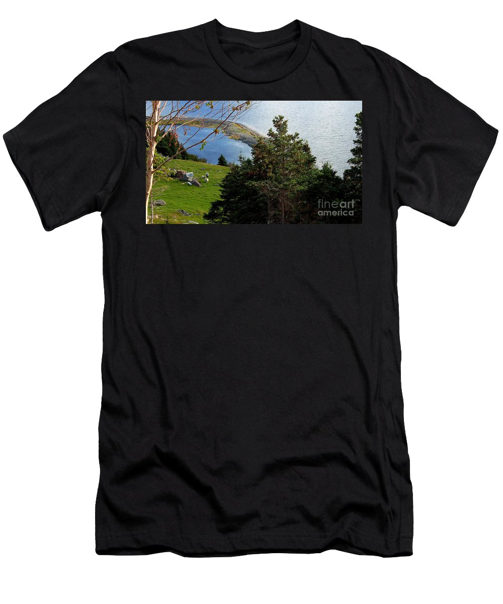 Curious Sheep In A Grassy Meadow Men's T-Shirt (Athletic Fit) featuring the photograph Curious Sheep In A Grassy Meadow by Barbara Griffin