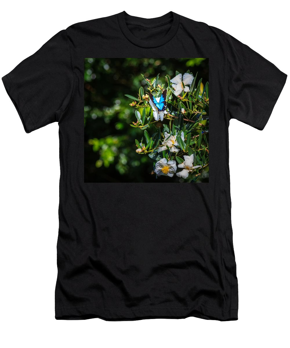 Nature Men's T-Shirt (Athletic Fit) featuring the photograph Daintree Monarch Butterfly by Silken Photography