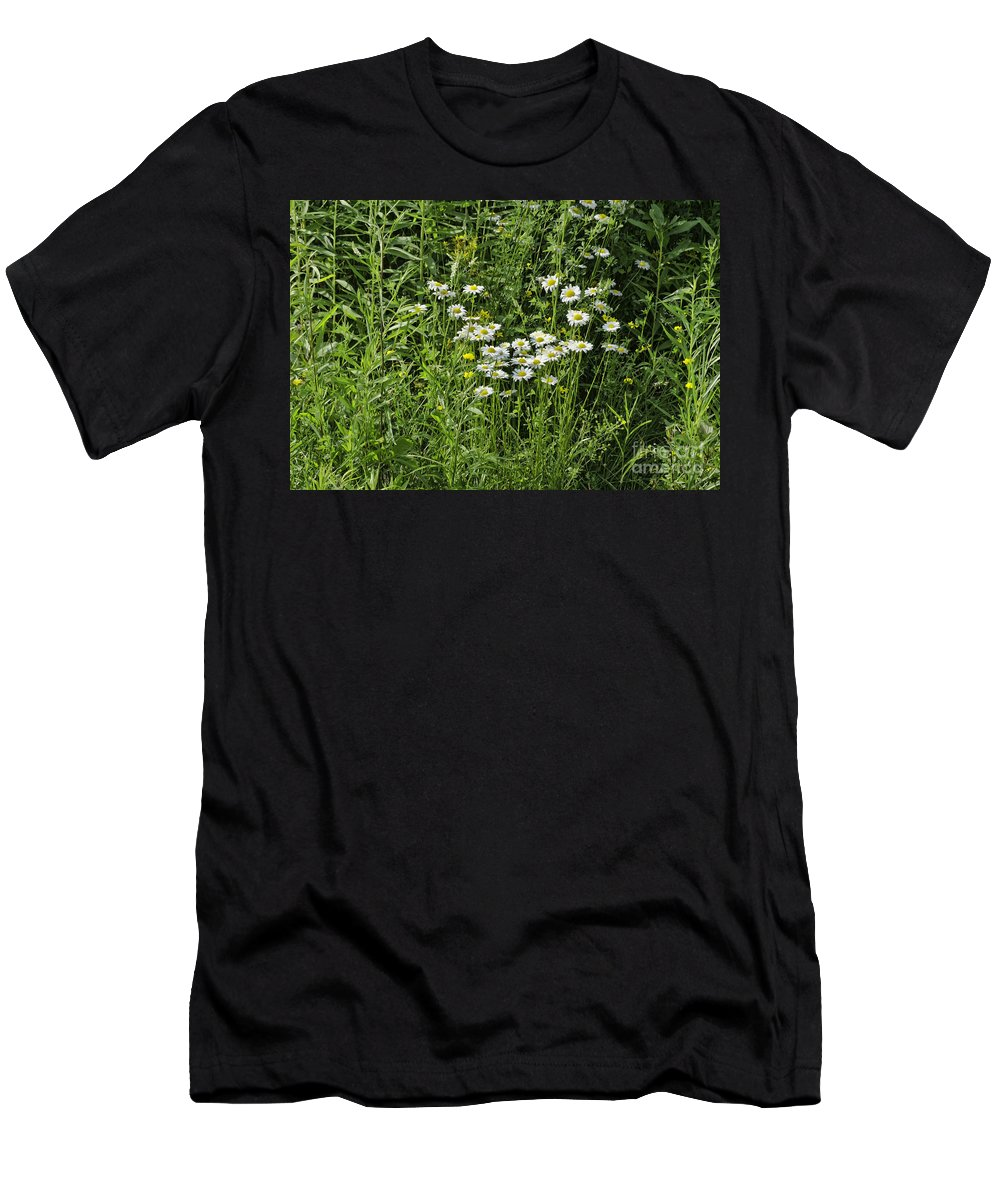Bloom Men's T-Shirt (Athletic Fit) featuring the photograph Daisies by Les Palenik