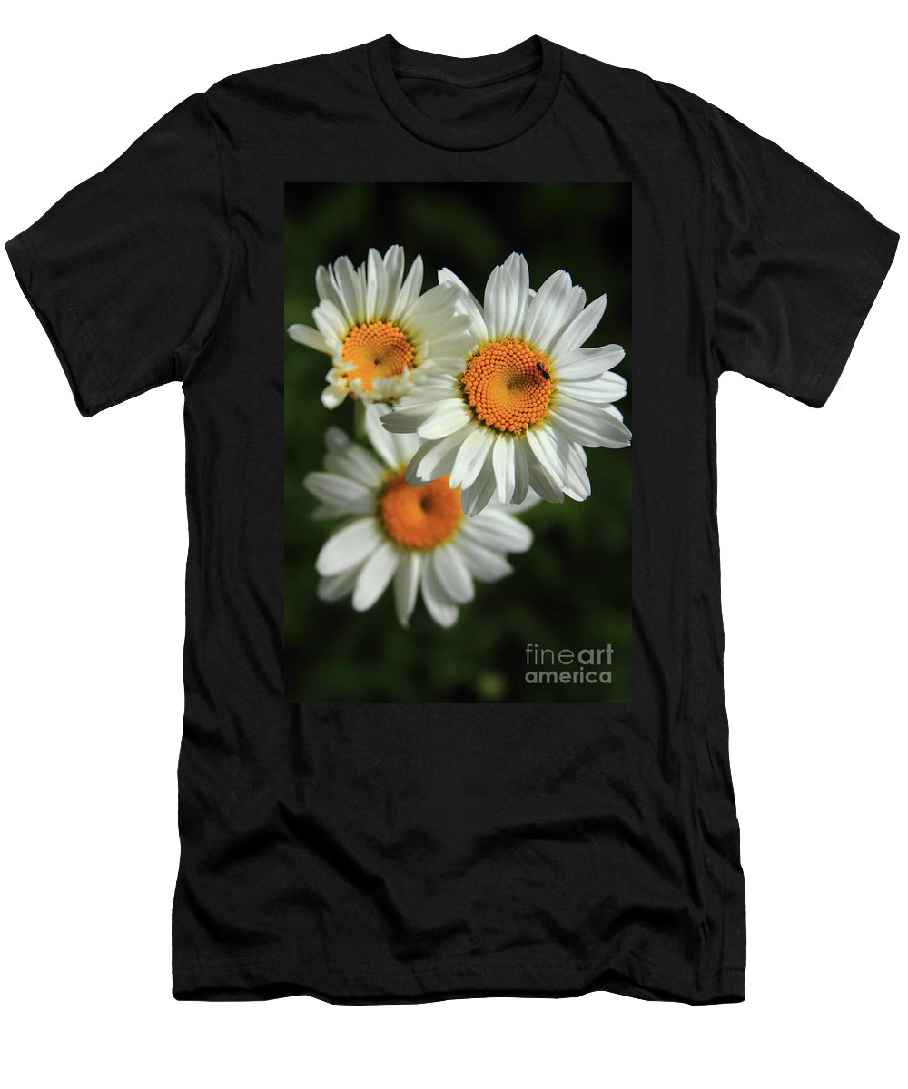 Reid Callaway Flower Men's T-Shirt (Athletic Fit) featuring the photograph Daisy And Friend by Reid Callaway