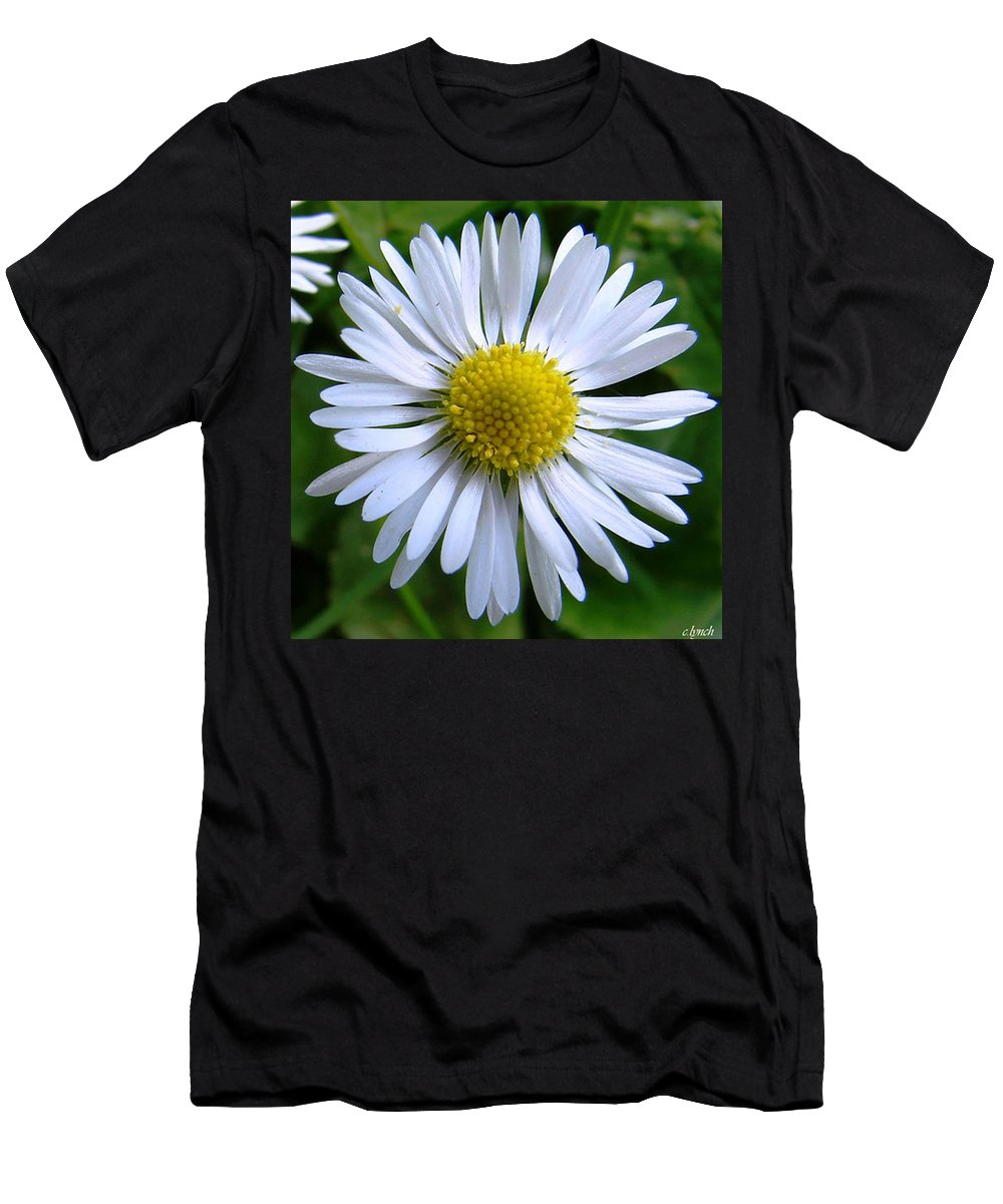 Daisy Men's T-Shirt (Athletic Fit) featuring the photograph Daisy by Carol Lynch