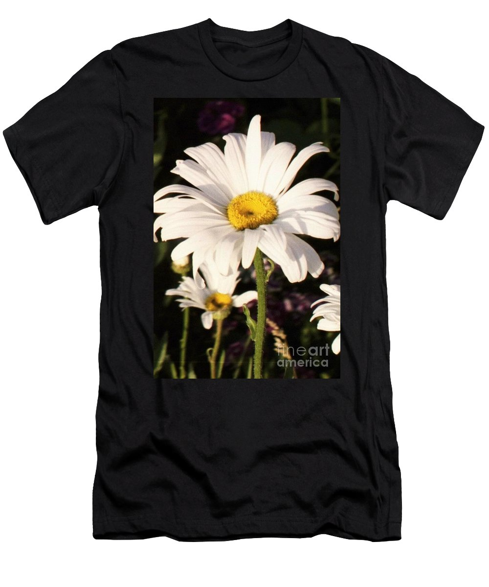Daisy Men's T-Shirt (Athletic Fit) featuring the photograph Daisy Close Up by Brandi Maher