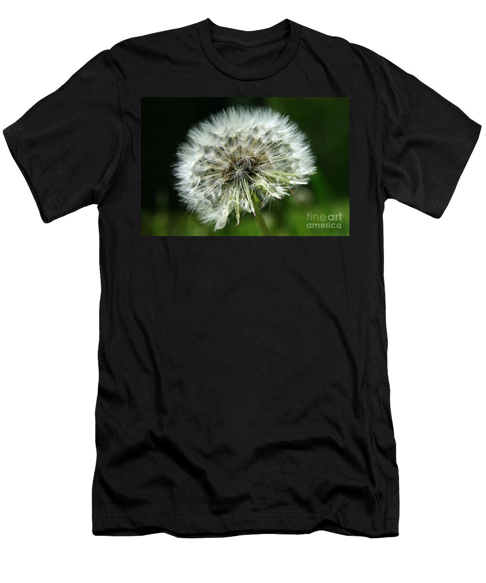 Seed Men's T-Shirt (Athletic Fit) featuring the photograph Dandelion Ready by Neal Eslinger