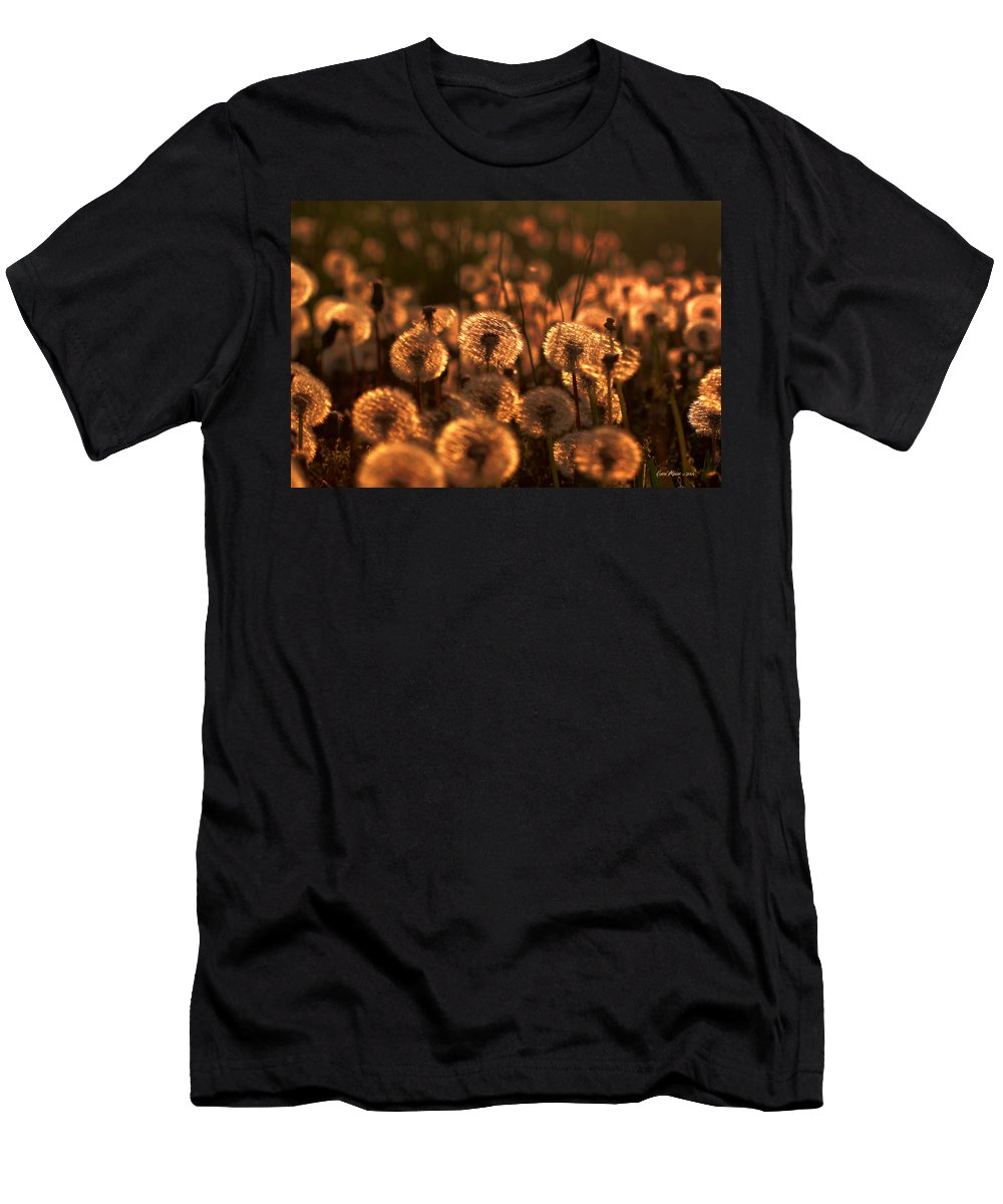 Weeds Men's T-Shirt (Athletic Fit) featuring the photograph Dandelion Sparkles by Ericamaxine Price
