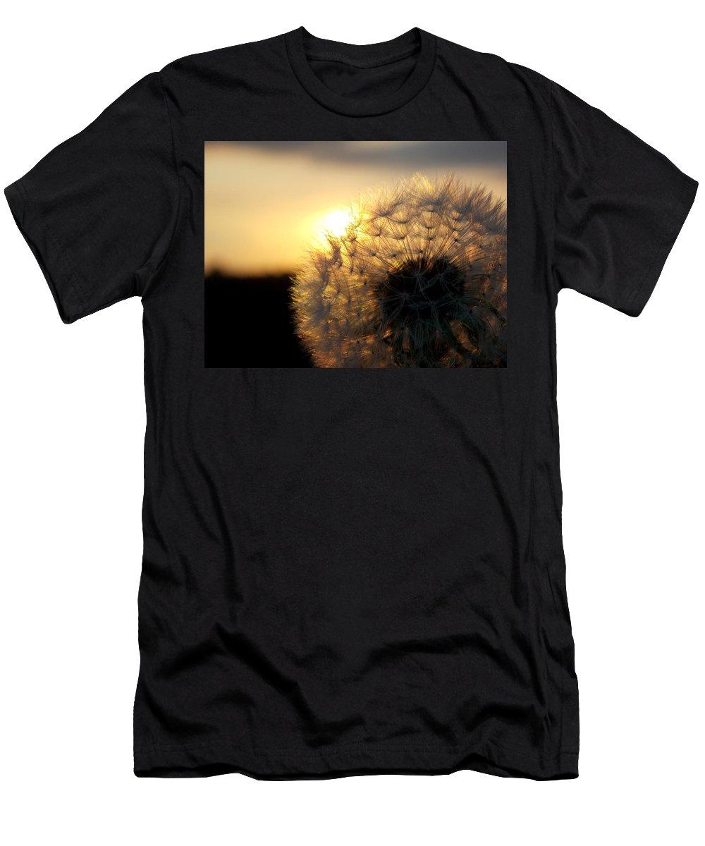 Dandelion Men's T-Shirt (Athletic Fit) featuring the photograph Dandelion Sunset by Chris Cox