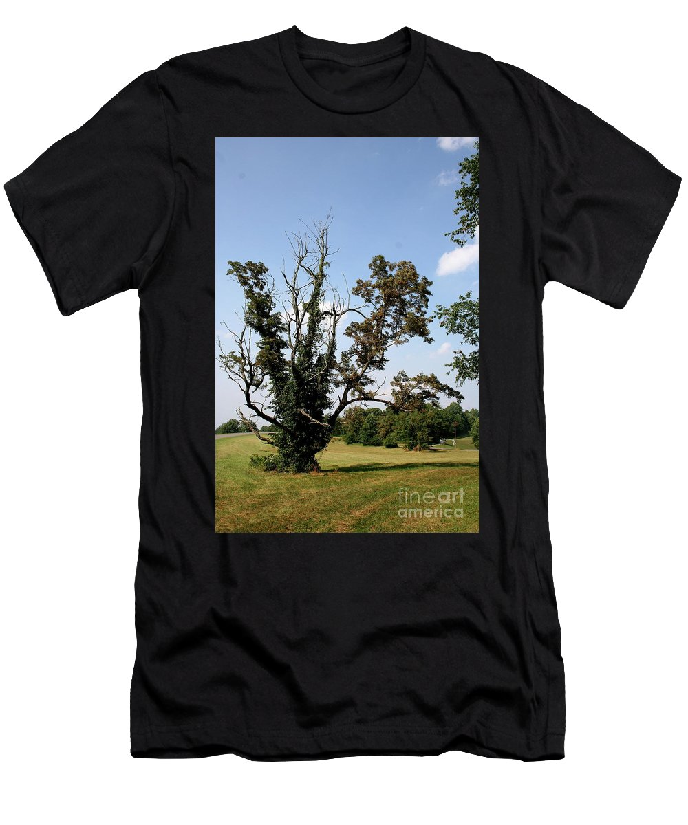 Tree Men's T-Shirt (Athletic Fit) featuring the photograph Dead Tree With Ivy by Christiane Schulze Art And Photography
