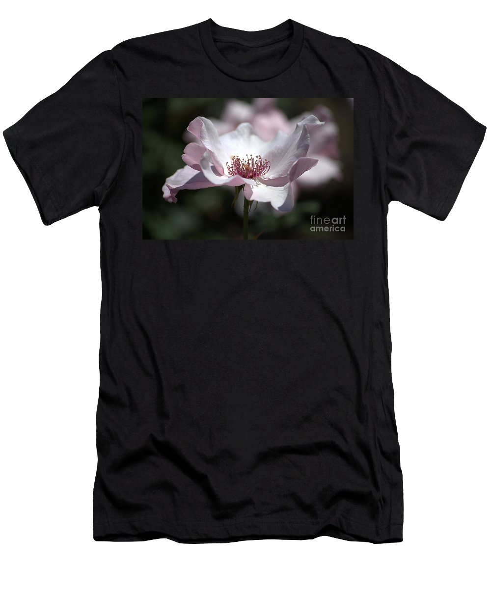 Rose Men's T-Shirt (Athletic Fit) featuring the photograph Delicate Pink by Sharon Elliott