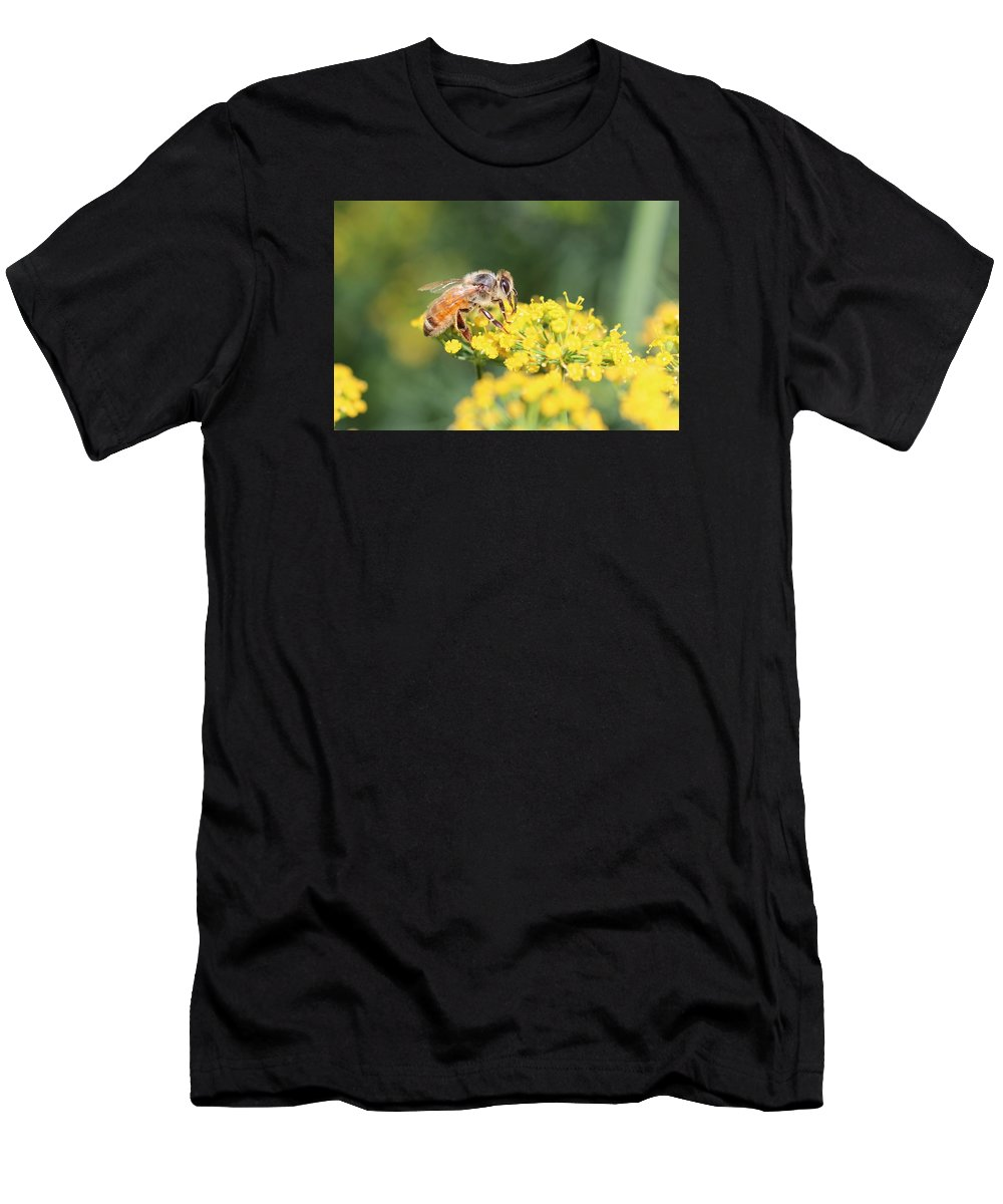 Honeybee Men's T-Shirt (Athletic Fit) featuring the photograph Delicious Dill by Lucinda VanVleck
