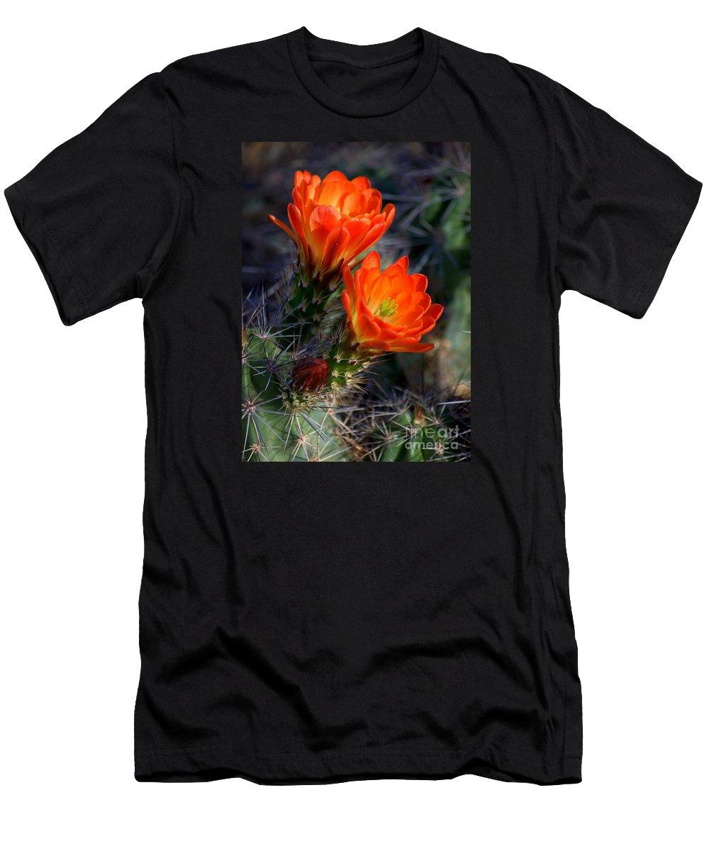 Southwestern Men's T-Shirt (Athletic Fit) featuring the photograph Desert Color by K D Graves