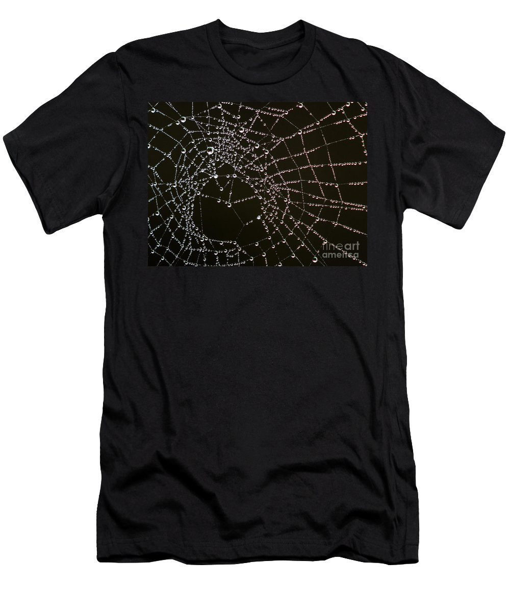 Arachnid Men's T-Shirt (Athletic Fit) featuring the photograph Dew Drops On Spider Web 4 by Tracy Knauer