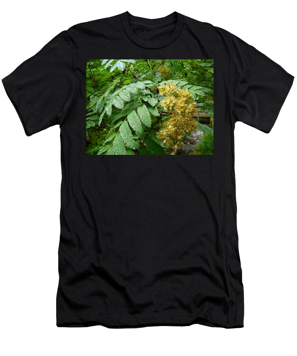 Upper Peninsula Men's T-Shirt (Athletic Fit) featuring the photograph Dew Go On by Two Bridges North