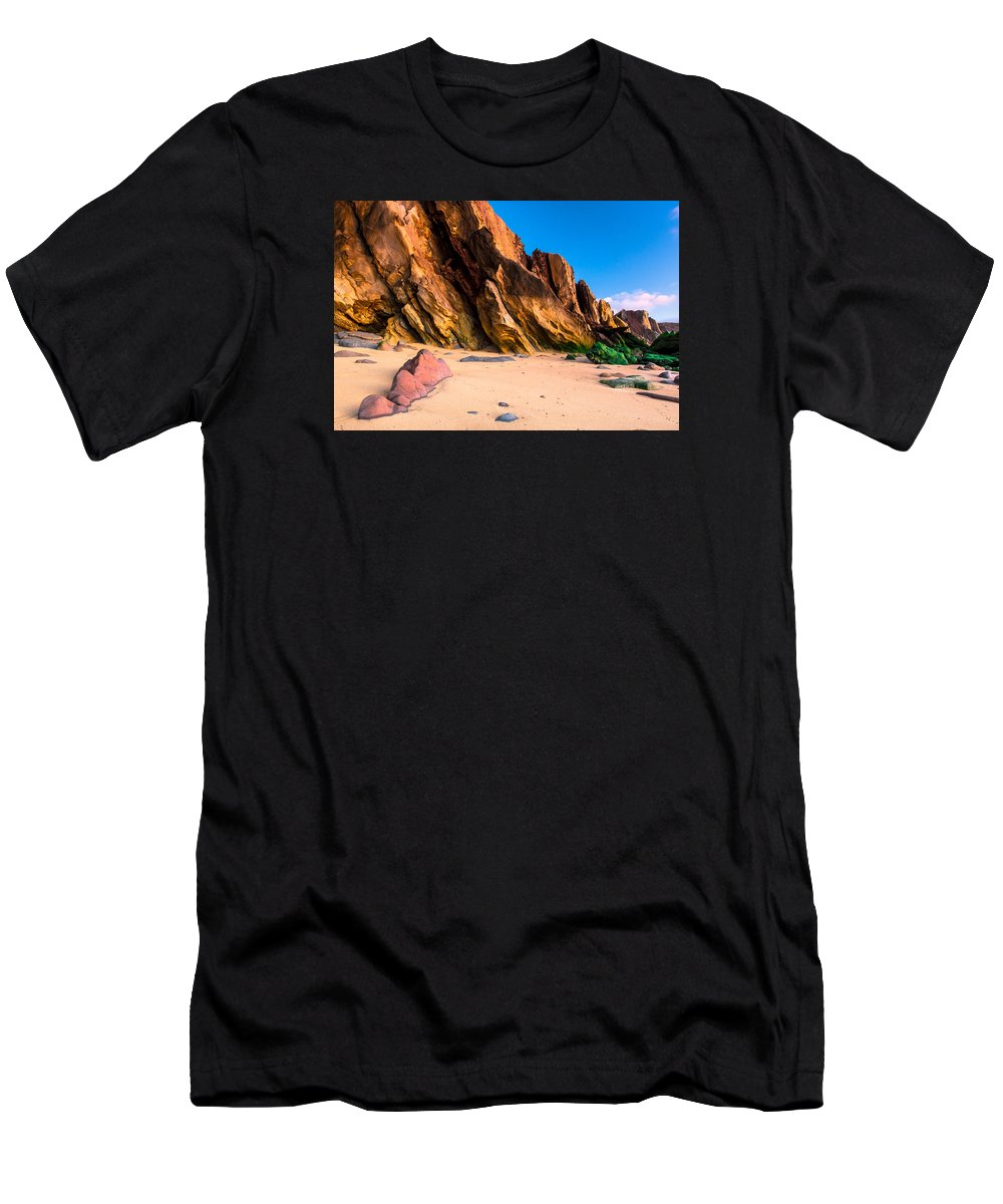 Rock Men's T-Shirt (Athletic Fit) featuring the photograph Dinosaur Tail by Edgar Laureano
