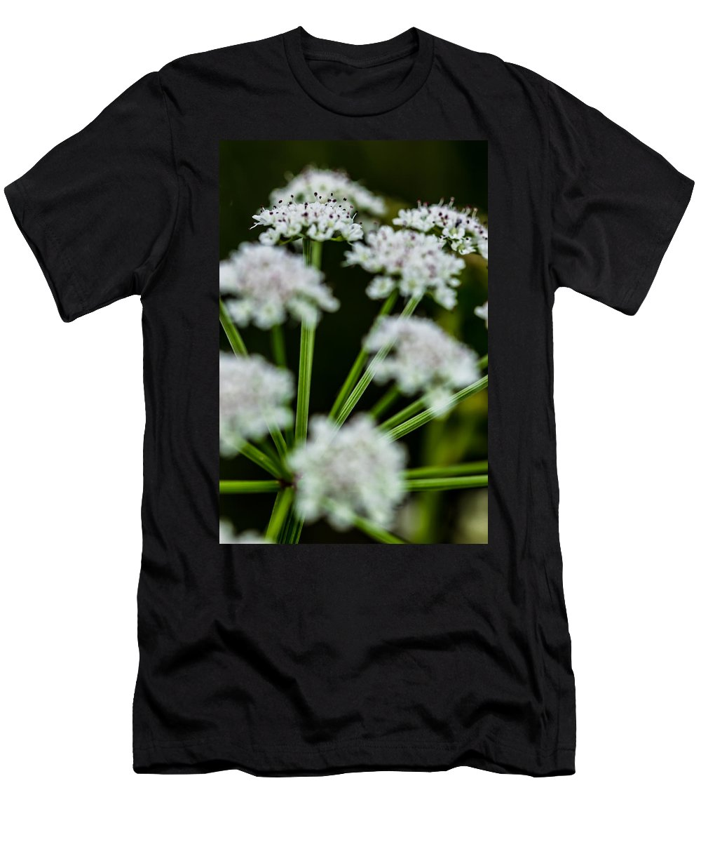 Flower Men's T-Shirt (Athletic Fit) featuring the photograph Divergence by Edgar Laureano