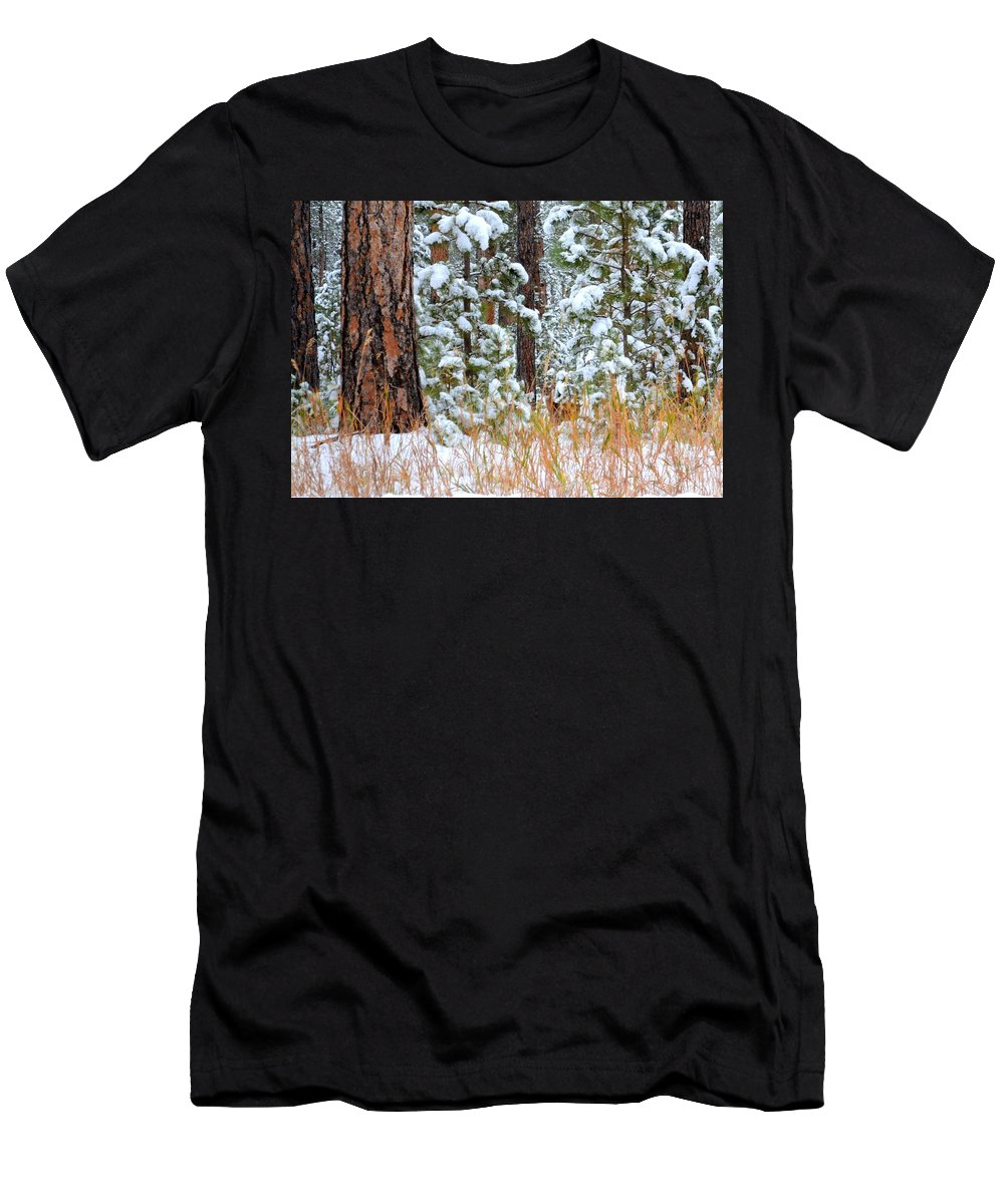 Pine Trees Men's T-Shirt (Athletic Fit) featuring the photograph Do You See Me by Clarice Lakota
