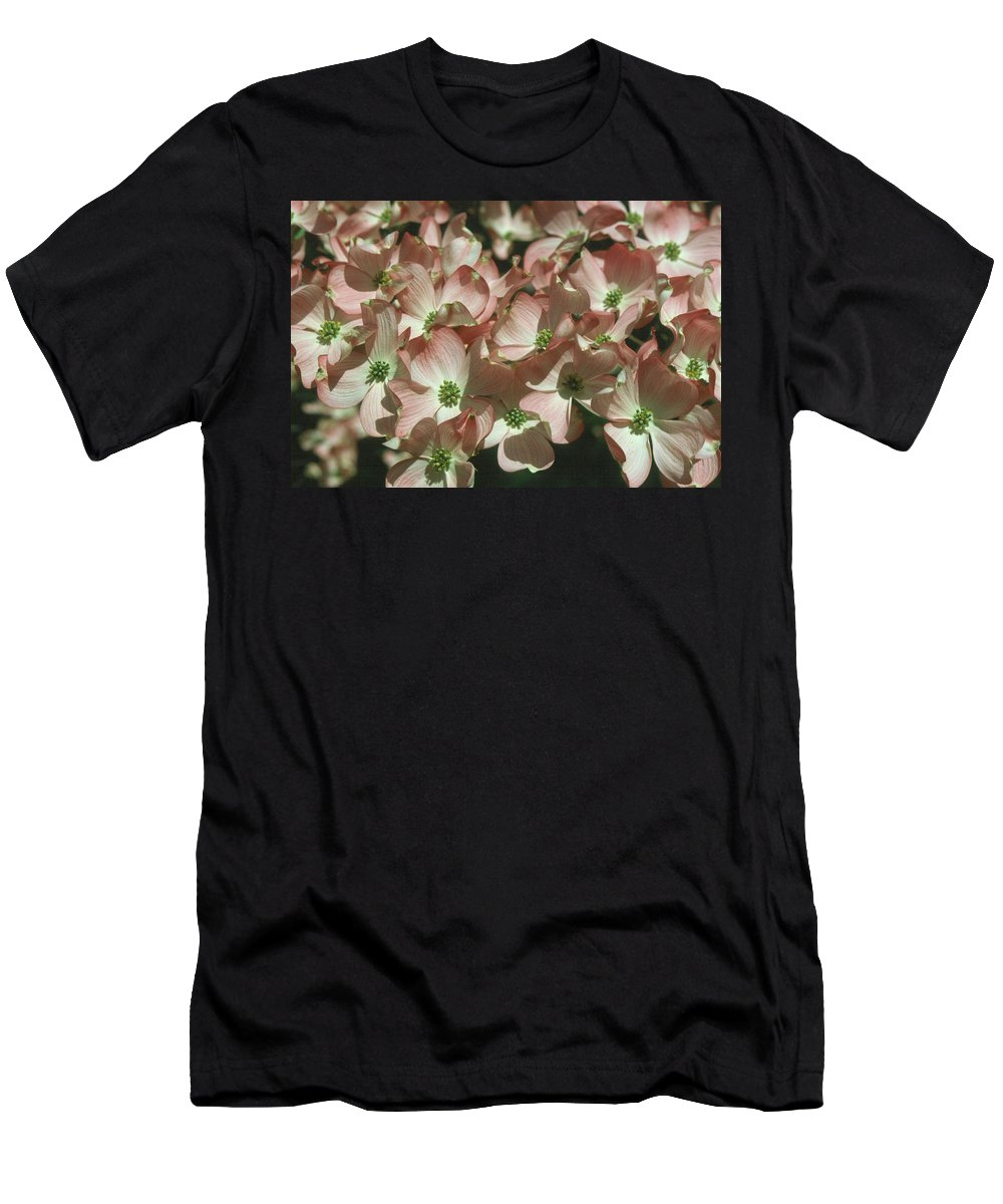 Dogwood Men's T-Shirt (Athletic Fit) featuring the photograph Dogwood 1 by Andy Shomock