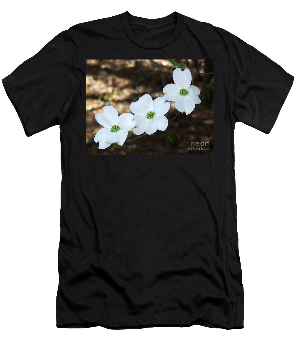 Dogwood Men's T-Shirt (Athletic Fit) featuring the photograph Dogwood by Andrea Anderegg