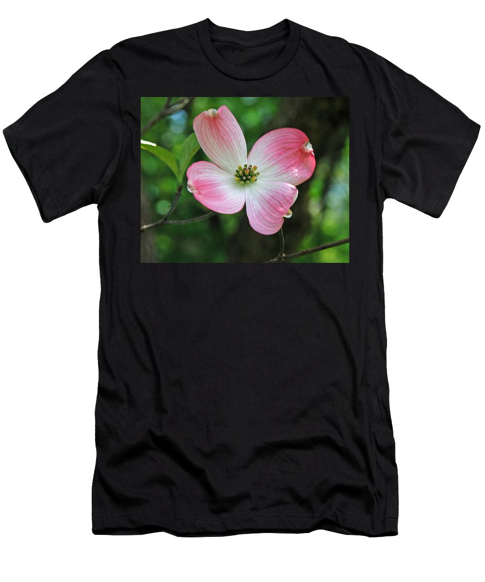 Dogwood Men's T-Shirt (Athletic Fit) featuring the photograph Dogwood Blosssom by Richard Bryce and Family