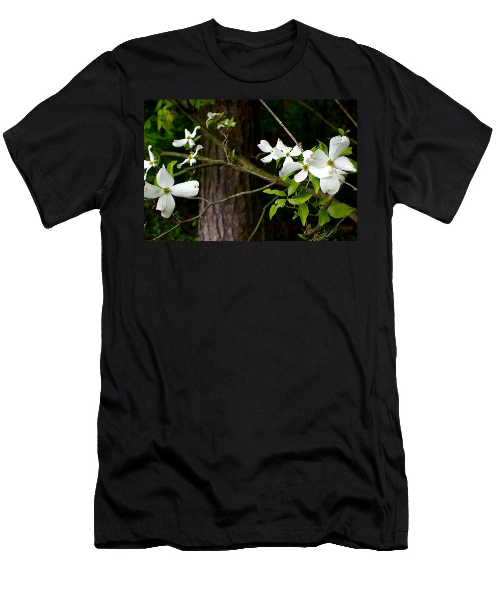 Flowers Men's T-Shirt (Athletic Fit) featuring the photograph Dogwood by Randy Pollard