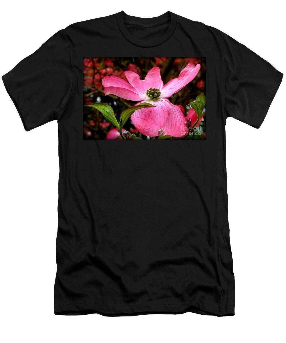 Flowering Plants Men's T-Shirt (Athletic Fit) featuring the photograph Dogwood Shows Pink by Susan Garren