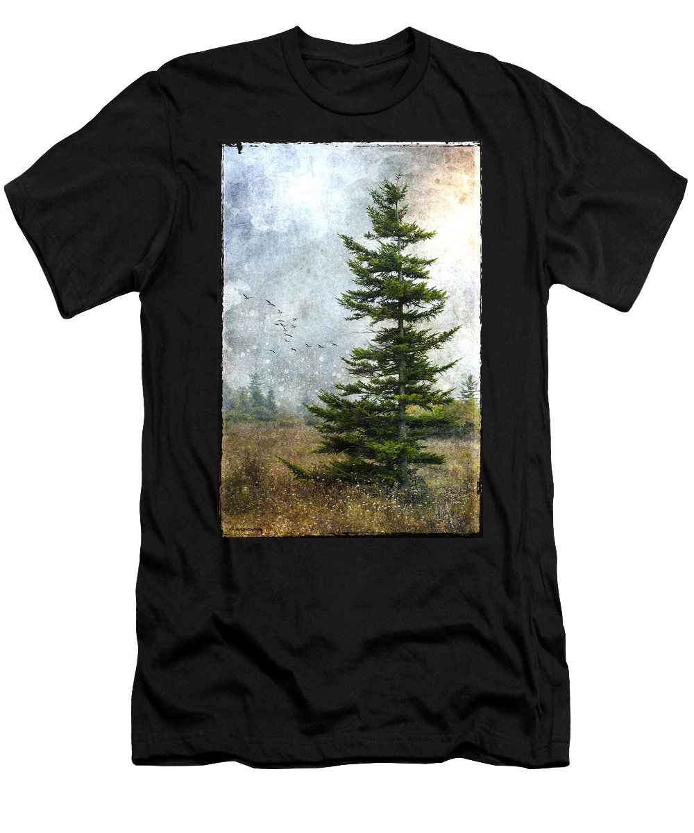 Ron Jones Men's T-Shirt (Athletic Fit) featuring the photograph Dolly Sods Pine by Ron Jones