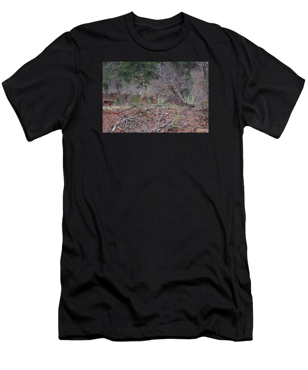 Men's T-Shirt (Athletic Fit) featuring the photograph Donkey Deer Feeding by Robert Wiener