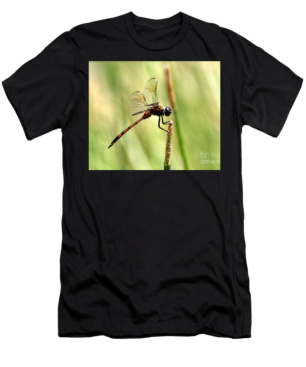 Dragonflies Men's T-Shirt (Athletic Fit) featuring the photograph Dragonfly Gold by Richard Gripp