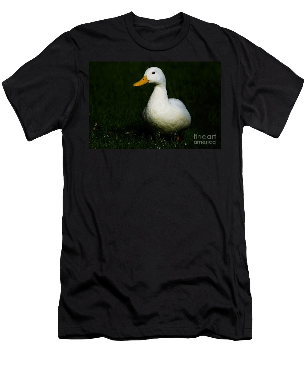 Duck Men's T-Shirt (Athletic Fit) featuring the photograph Duck by Mats Silvan