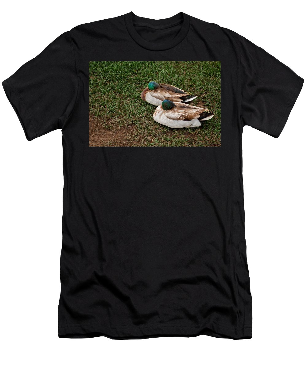 Men's T-Shirt (Athletic Fit) featuring the photograph Ducks At Rest by David Pantuso