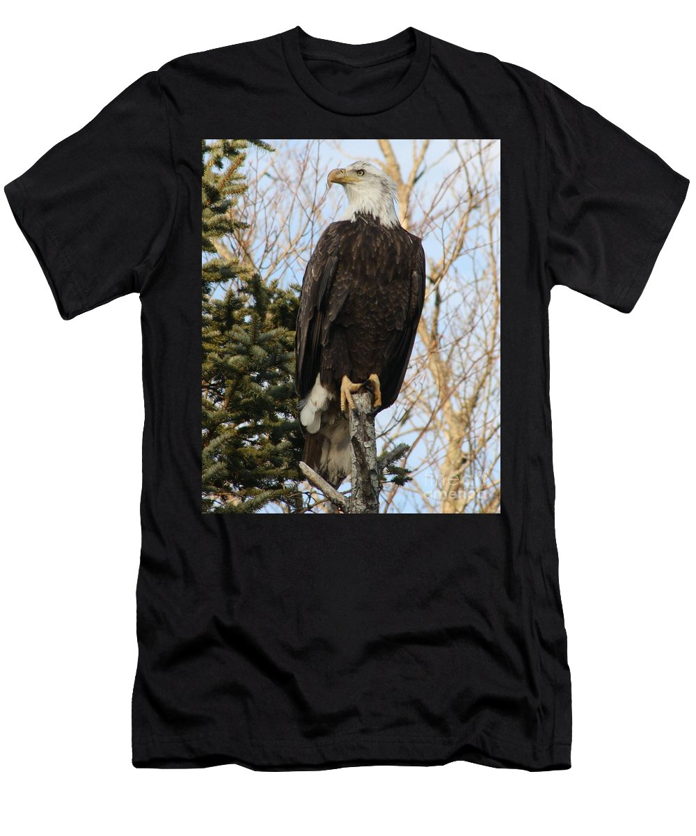 Eagle Men's T-Shirt (Athletic Fit) featuring the photograph Eagle 1991a by Joseph Marquis