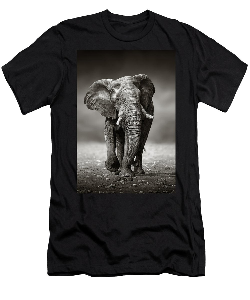 Elephant T-Shirt featuring the photograph Elephant approach from the front by Johan Swanepoel