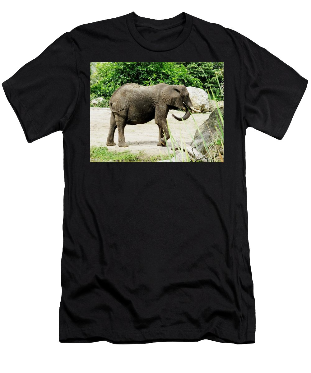 Elephant Men's T-Shirt (Athletic Fit) featuring the photograph Elephant by Zina Stromberg