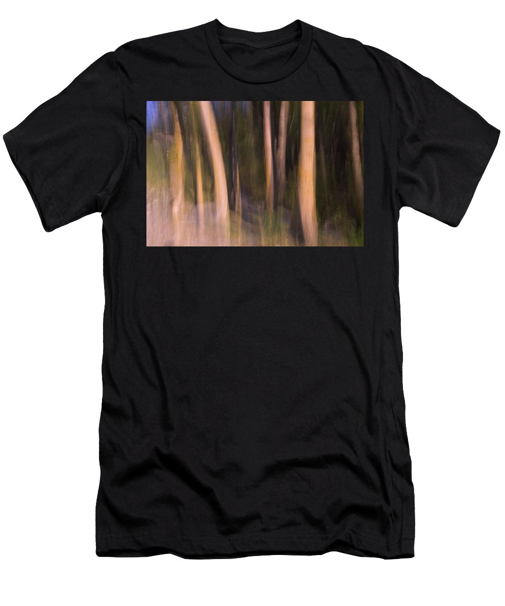 Abstracts Men's T-Shirt (Athletic Fit) featuring the photograph Enchanted Forest by Guido Montanes Castillo