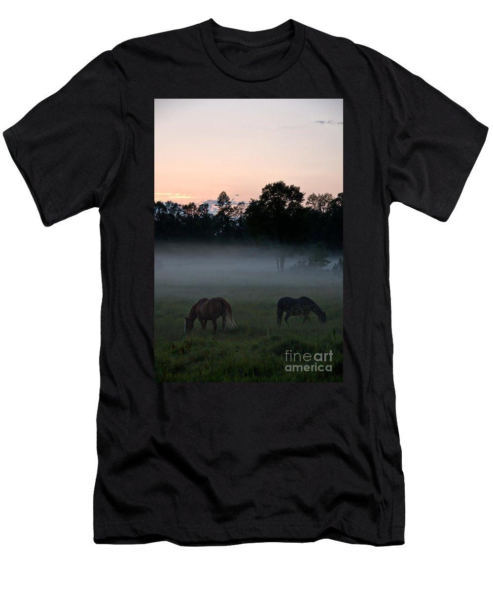 Landscape Men's T-Shirt (Athletic Fit) featuring the photograph Evening Mist by Cheryl Baxter