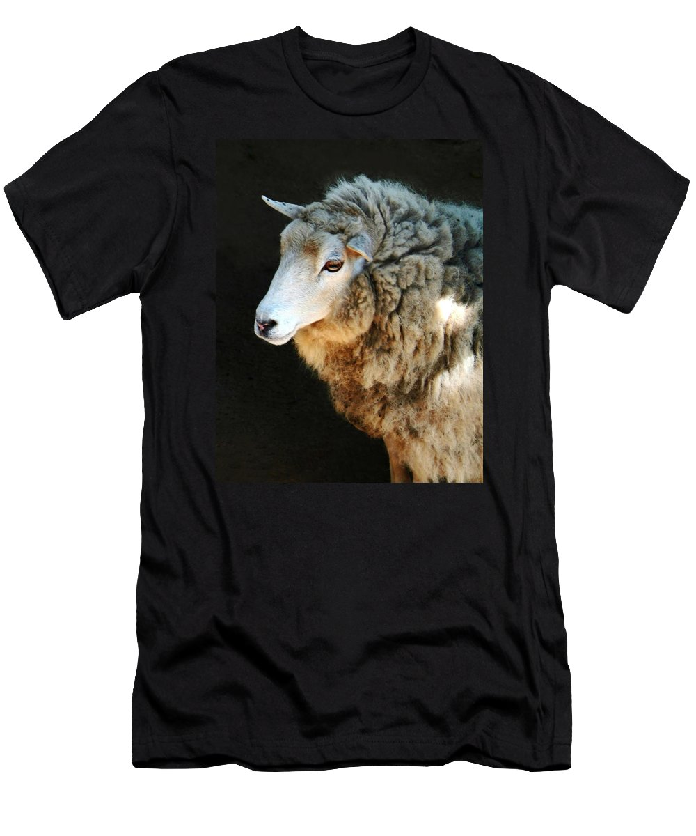 Ewe Are So Beautiful Men's T-Shirt (Athletic Fit) featuring the photograph Ewe Are So Beautiful by Ellen Henneke