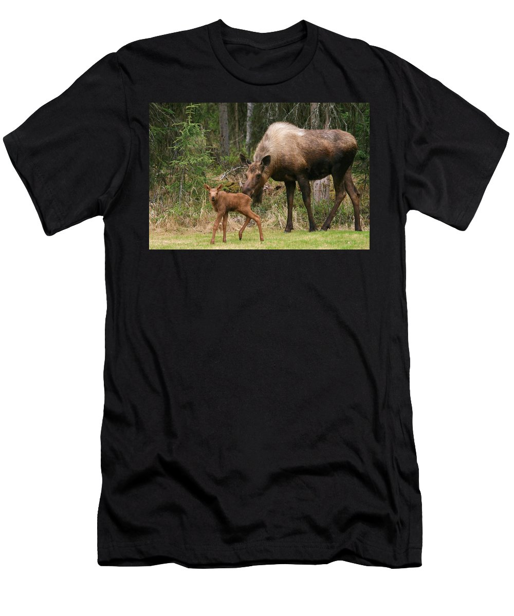 Moose Men's T-Shirt (Athletic Fit) featuring the photograph Exploring With Mom by Karen Jones