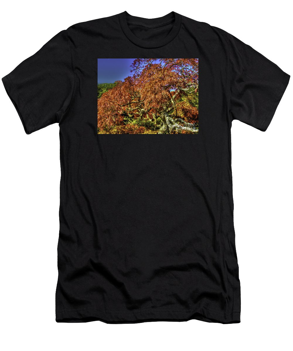 Fall Men's T-Shirt (Athletic Fit) featuring the photograph Fall Color At Biltmore by Dale Powell