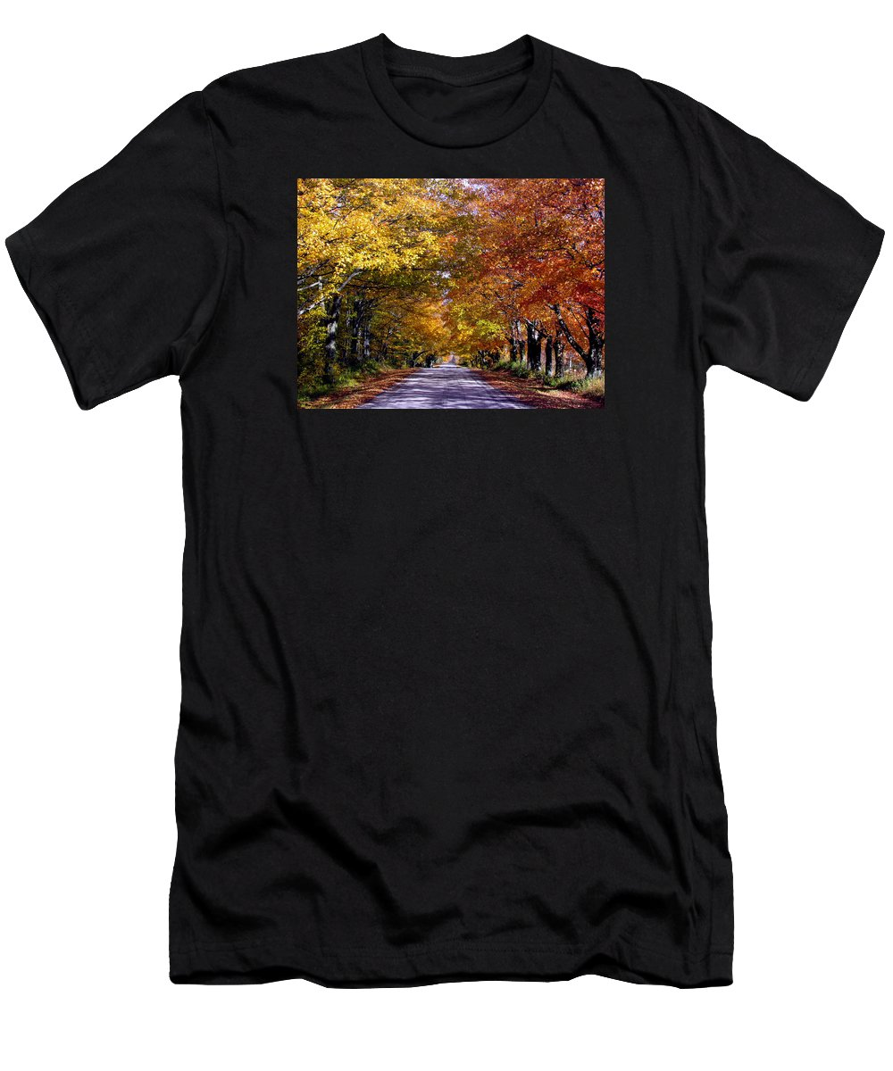 Fall Leaves Men's T-Shirt (Athletic Fit) featuring the photograph Fall Colors Near Sister Bay by David T Wilkinson