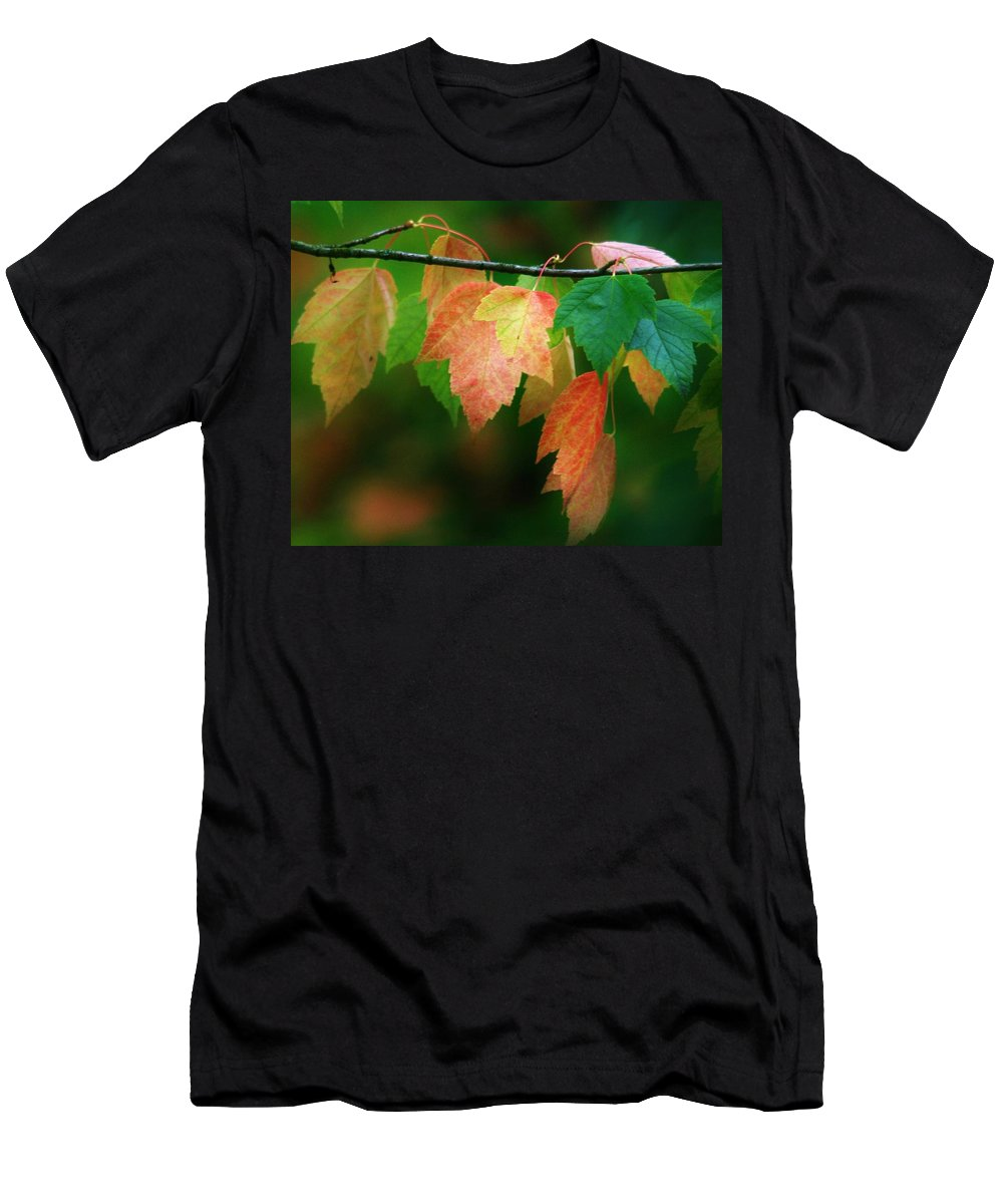 Leaves Men's T-Shirt (Athletic Fit) featuring the photograph Fall Comes by Karen Jones