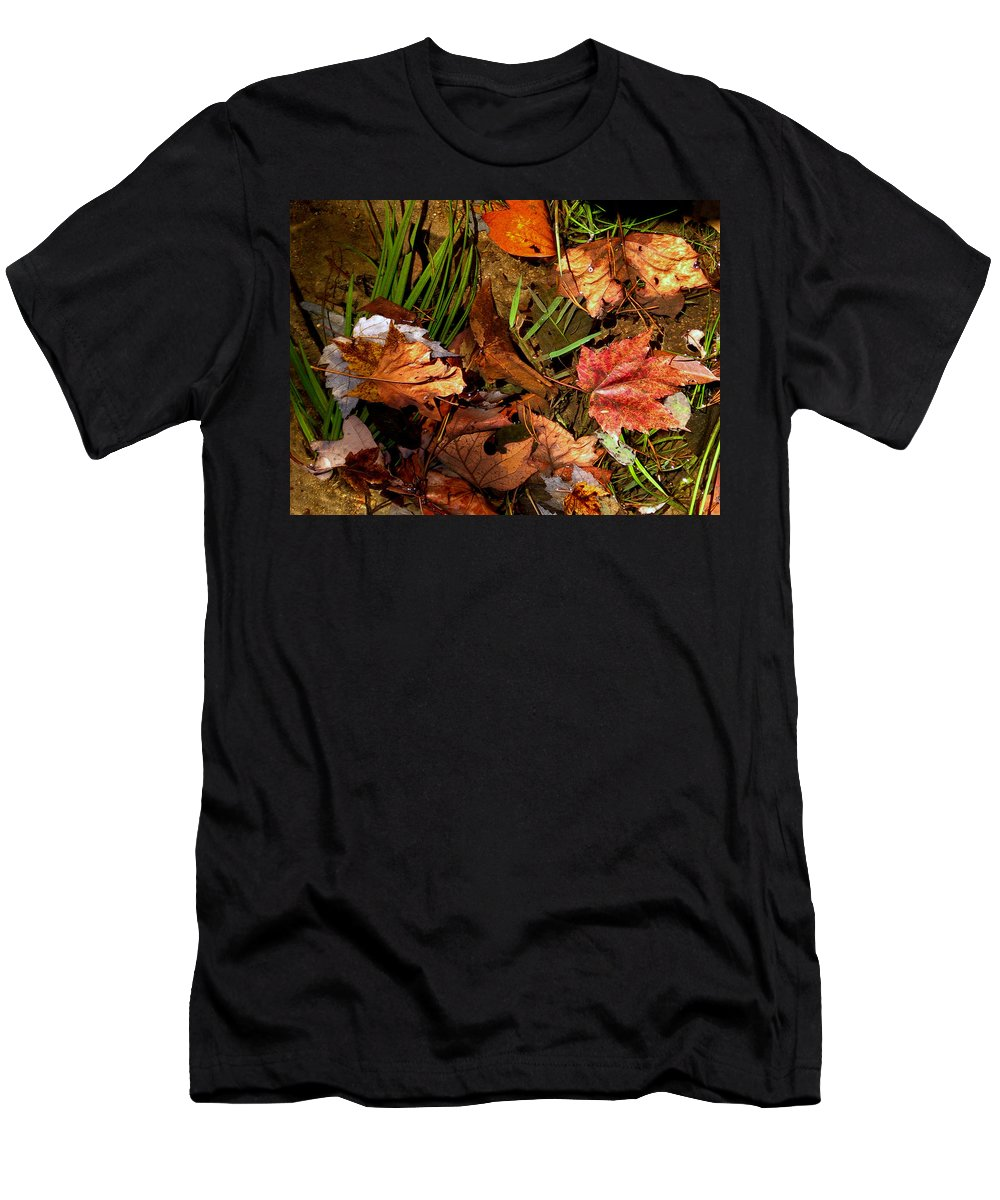Fall Men's T-Shirt (Athletic Fit) featuring the photograph Fall Leaves 5 by Skip Willits