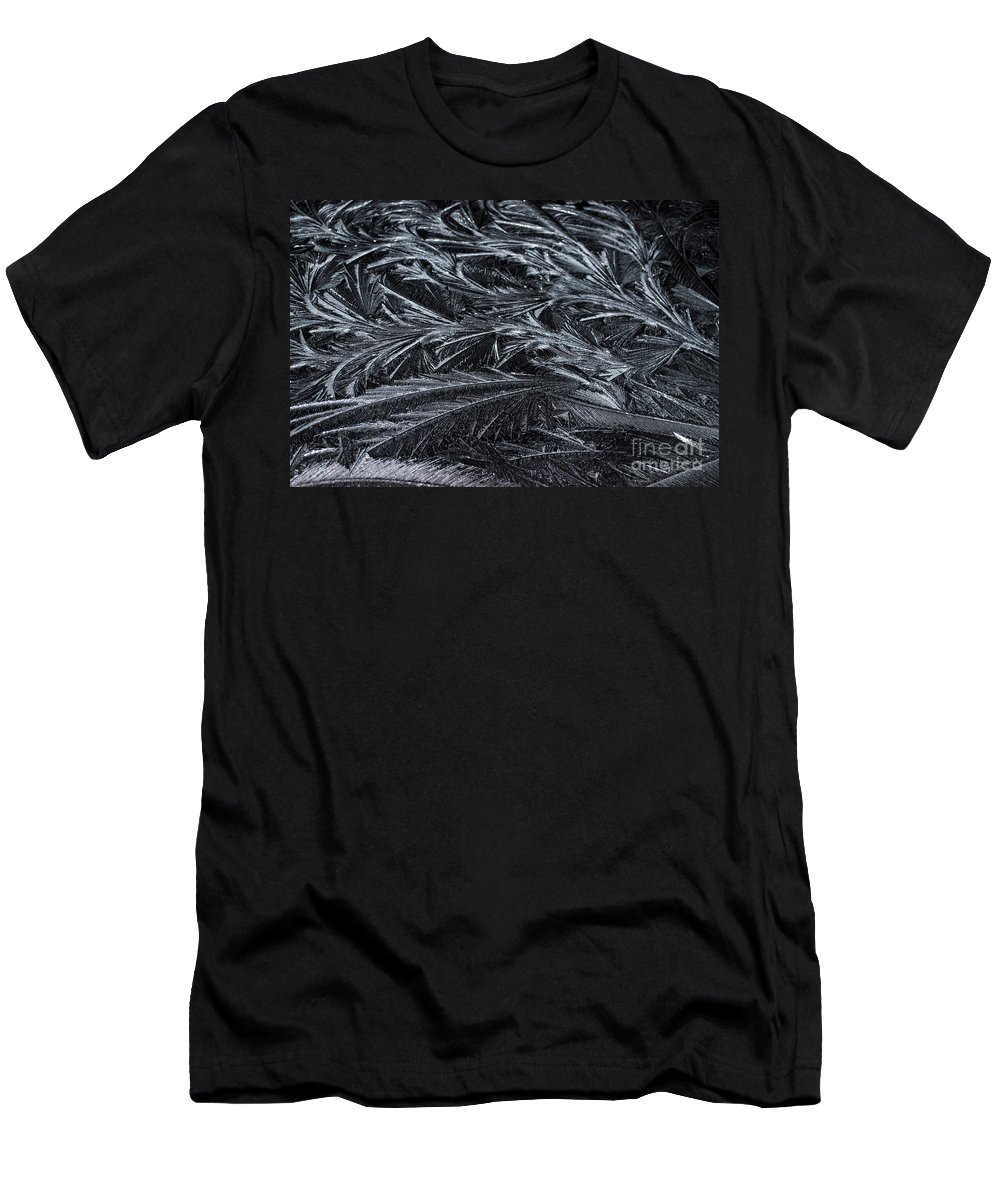 Ice Men's T-Shirt (Athletic Fit) featuring the photograph Feathered Ice by Judy Wolinsky